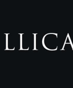 Illica Vini
